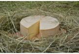 SYR STAREC- zrejúci 6 mesačný kravský plnotučný z nepasterizovaného mlieka