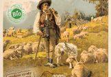 """BRYNDZA 1787 z nepasterizovaného BIO ovčieho mlieka,"""" Super Potravina """""""
